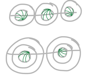 The first step of the drawing, a small shell-like series of lines in the middle of the circle.